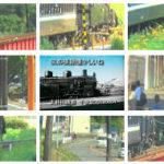 蒸気機関車に引かれて大井川鐡道。